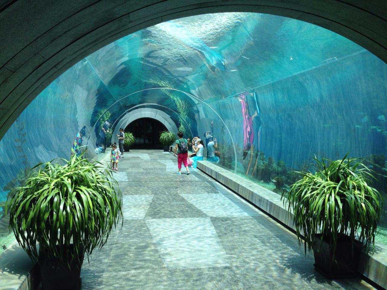 三亚海棠湾洲际大酒店海洋餐厅