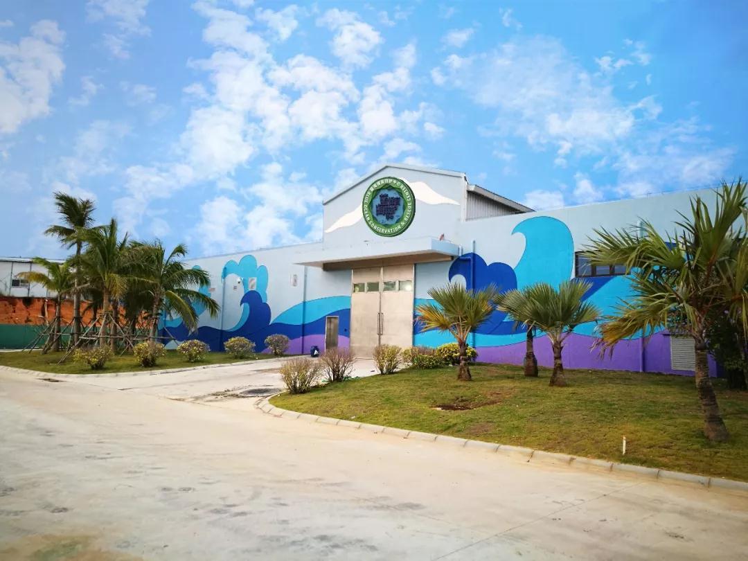 海南首个海洋动物保育救护中心挂牌启用